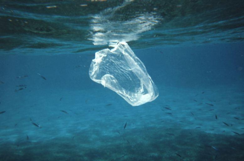 Immer mehr Plastik treibt in unseren Ozeanen. (Foto: Ben Mierement/NOAA)